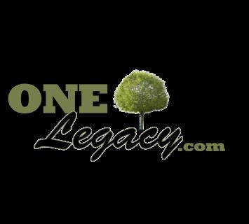 OneLeg_FinalFullMaster(TM) copy